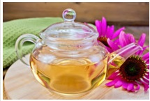 How to cure herpes naturally forever using Echinacea?